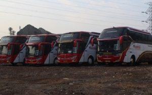 Perhatikan 4 Hal Ini Sebelum Sewa Bus Pariwisata